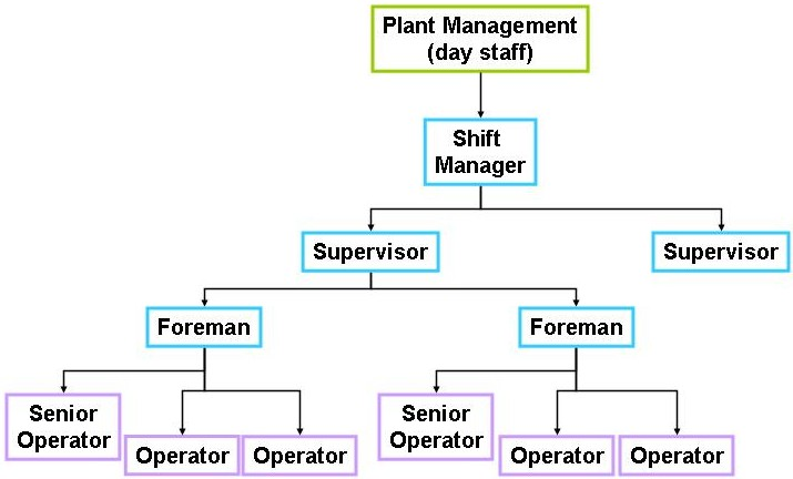 Traditional hierarchical team structure